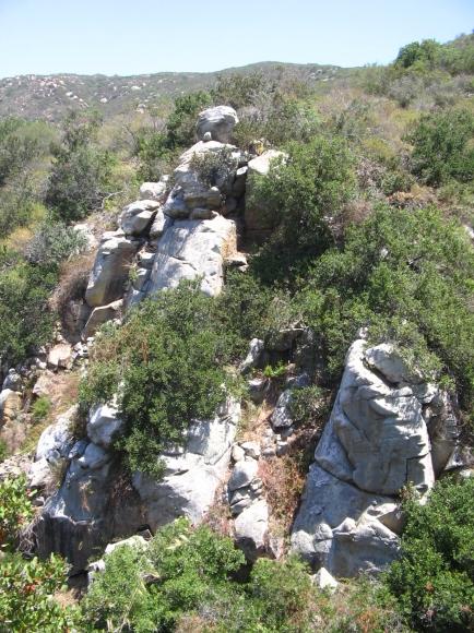 elfinforest-cliffs