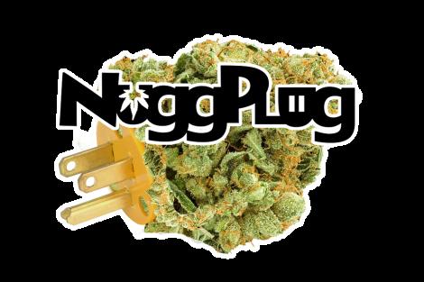nuggplug-logo-white-stroke-w-nug